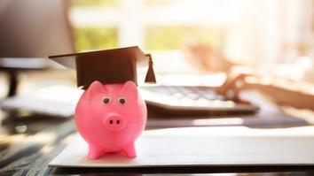 Close-up of pink piggy bank with graduation cap