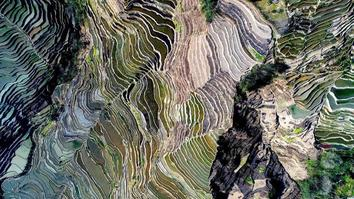 World's largest and most beautiful Rice Terraces