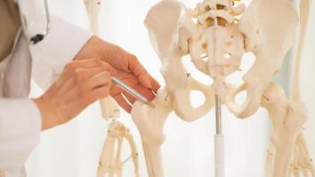 Anatomy student pointing on human skeleton anatomical model